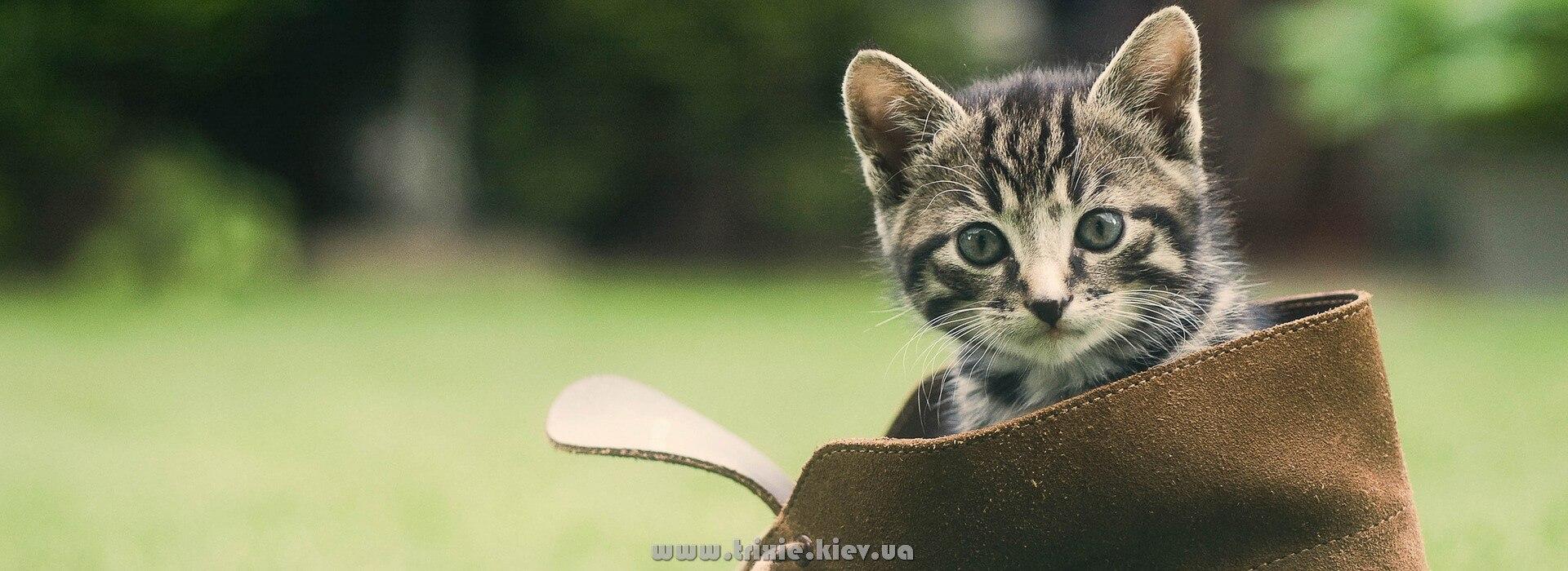 Купить Зоотовары TRIXIE для кошек в Киеве
