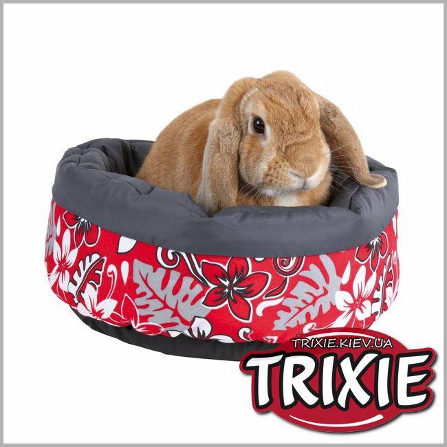 Mansion 5ft rabbit hutch with under run